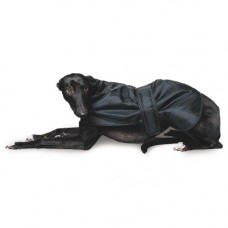 Ancol Black 70cm Greyhound Coat