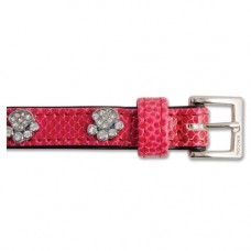 Ancol Sparkly Paw Crock Leather Collar 35cm